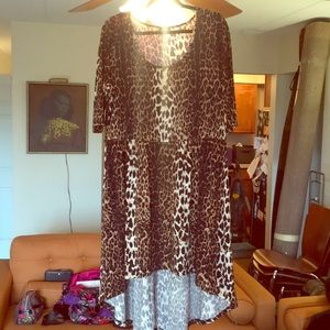 City Chic Leopard Animal Print high/Low dress